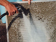 Vault Cleaning and Filter Services